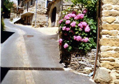 Rue principale de Mandailles